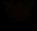 B&B Monzambano – Corte del Mincio – LAGO DI GARDA